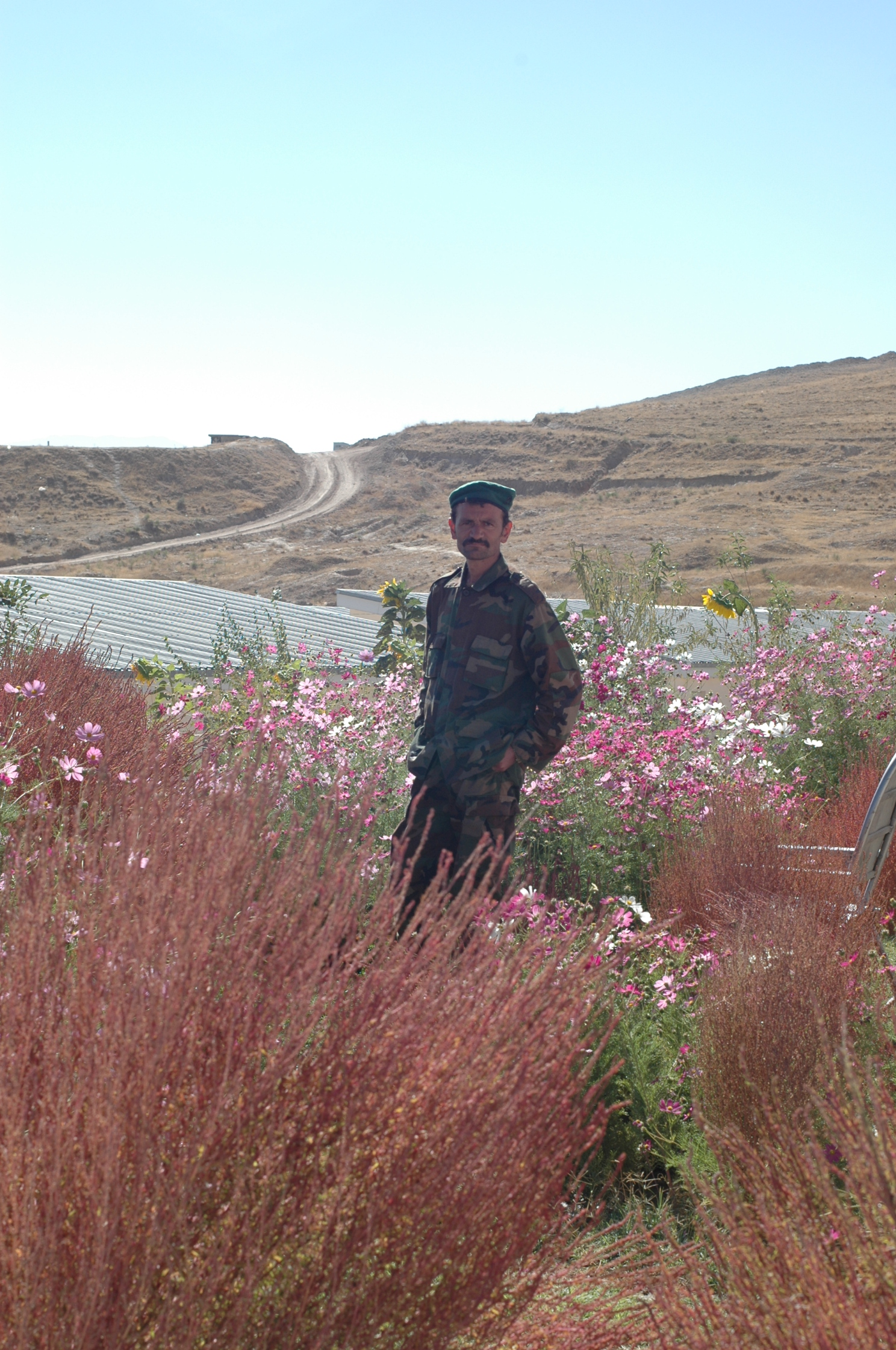 garden-of-afghan-soldier.jpg