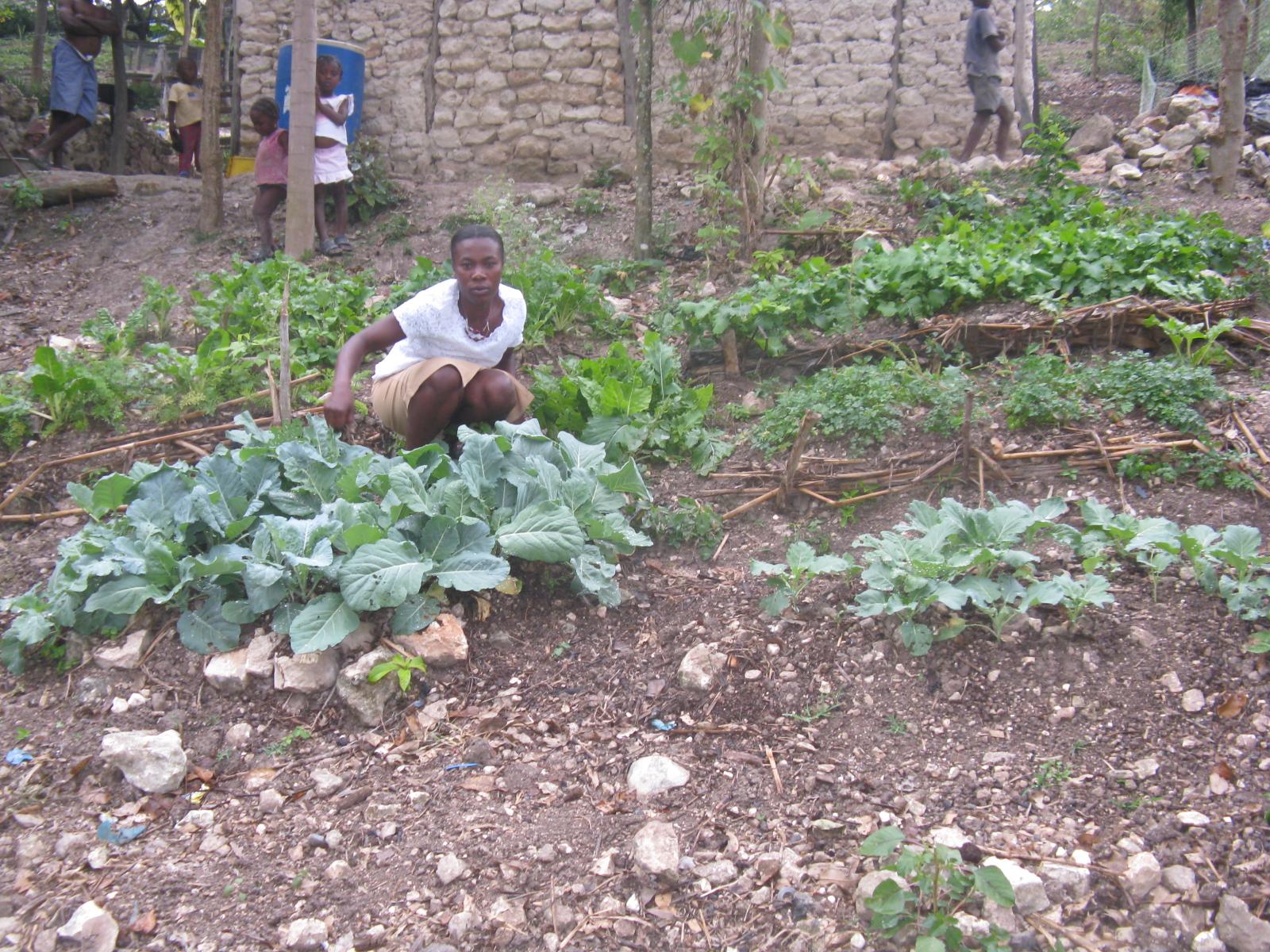 haiti2009odanies_square_garden1_at_grand_boulage__gbg_002.jpg